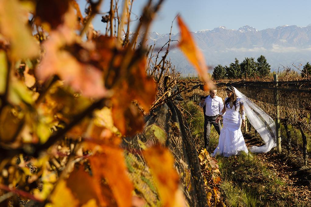 em meio a plantação de uva noivos fazem foto