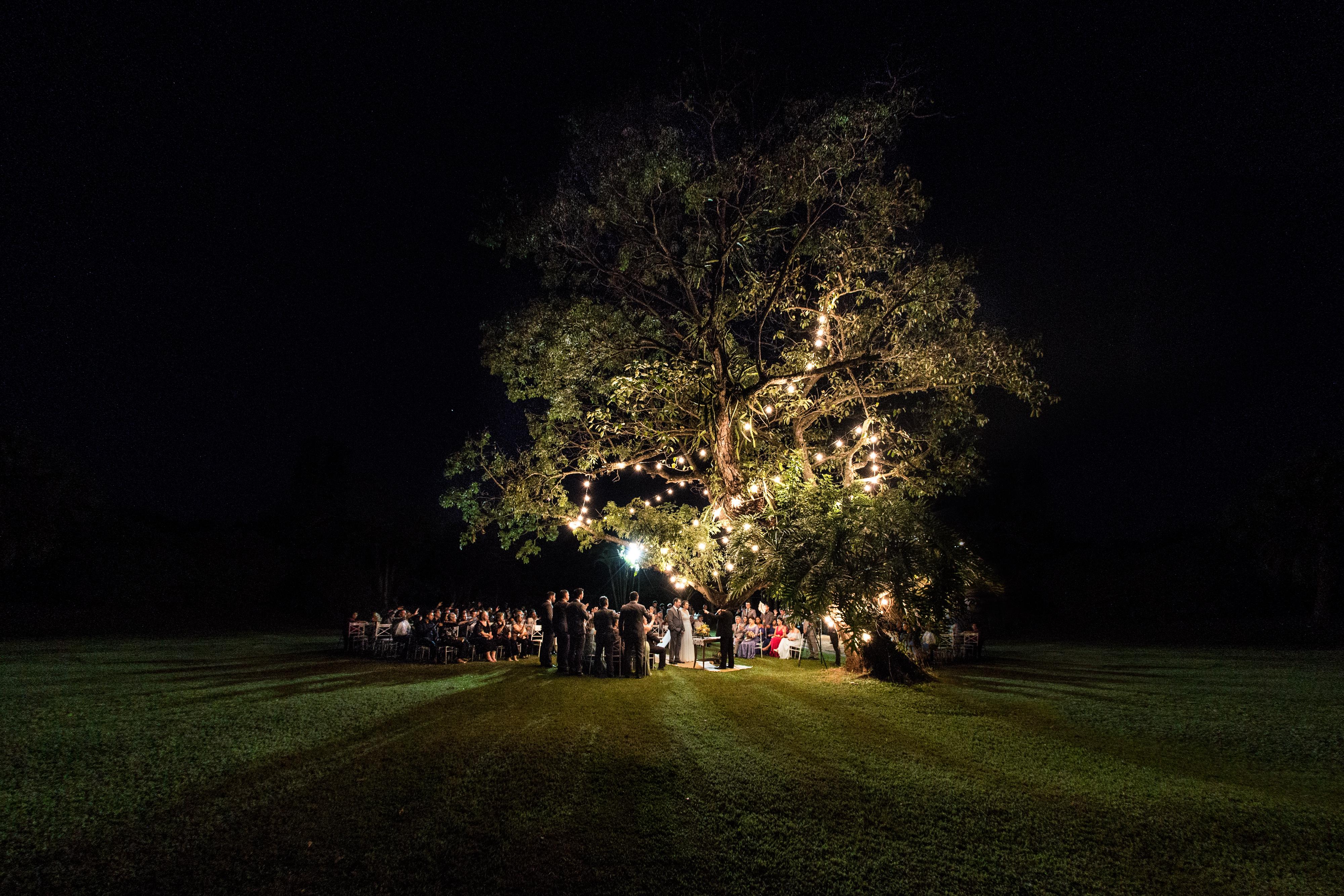 Contate Theo Barros -  Retratista e Fotografo de Casamentos