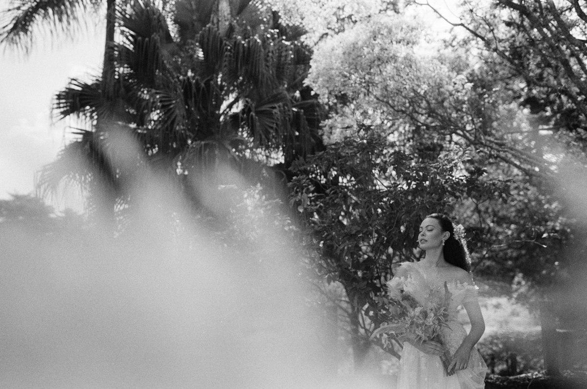 Imagem capa - Editorial Clamore - Fotos analógicas (Filme 35mm) por Guilherme Pontes