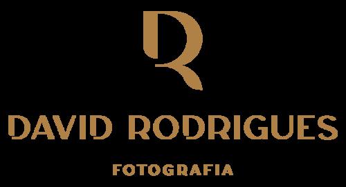 Logotipo de David Rodrigues Fotografia