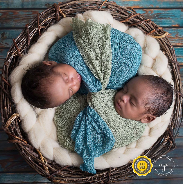 Newborn Gêmeos - Bernardo e Enzo