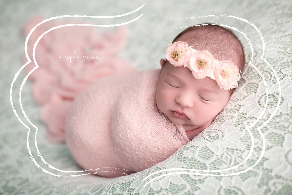 Imagem capa - O feto aprende por Angela Teresa Perim Carreiro