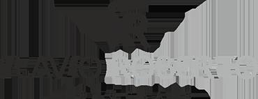Logotipo de FLAVIO ROBERTO PEREIRA GOMES FILHO