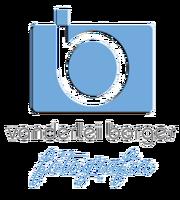 Logotipo de Vanderlei Antunes Borges