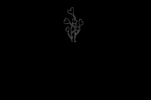Logotipo de Kamilla Paixao Morais