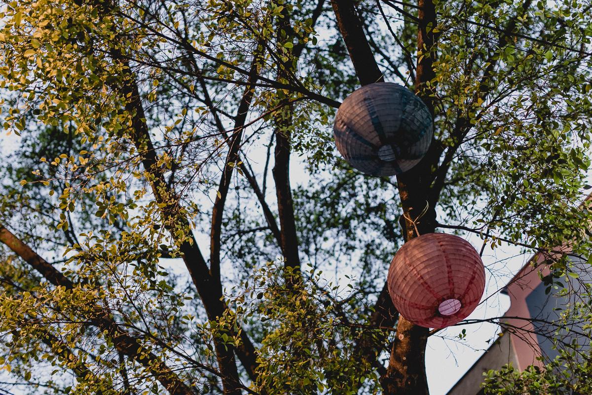 arvore na frente do buffet miniland tree em pinheiros sp