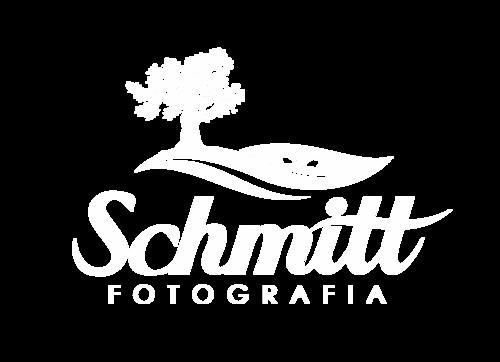 Logotipo de Tauane Schmitt