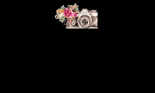 Logotipo de Carla Demm Photographias