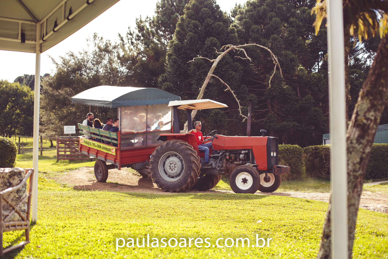 Imagem capa - DICA DE PASSEIO PARA AS FÉRIAS DAS CRIANÇAS por Paula Soares