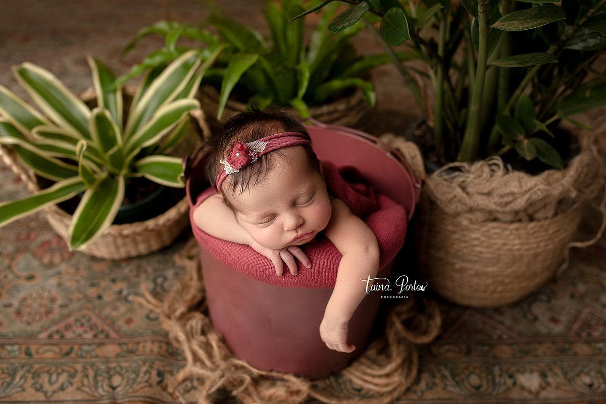 Imagem capa - Minha Evolução na Fotografia Newborn  por Tainá Porto