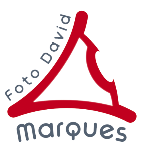 Logotipo de Foto David Marques
