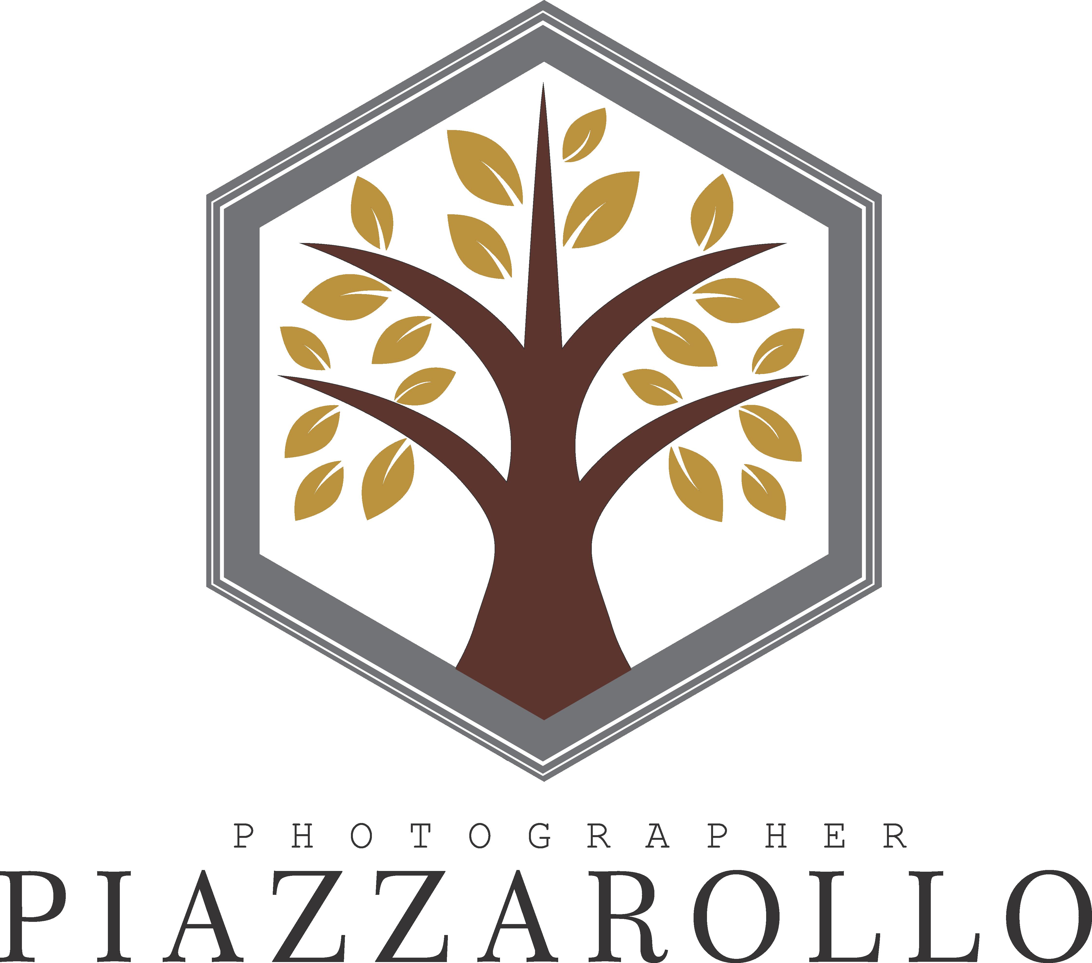 Logotipo de Gustavo Piazzarollo