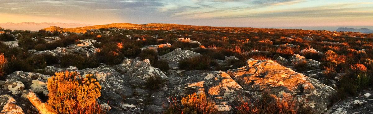 Imagem capa - Panorâmica da Table Mountain - Esteja sempre preparado para a foto da sua vida por Guilherme Pimenta