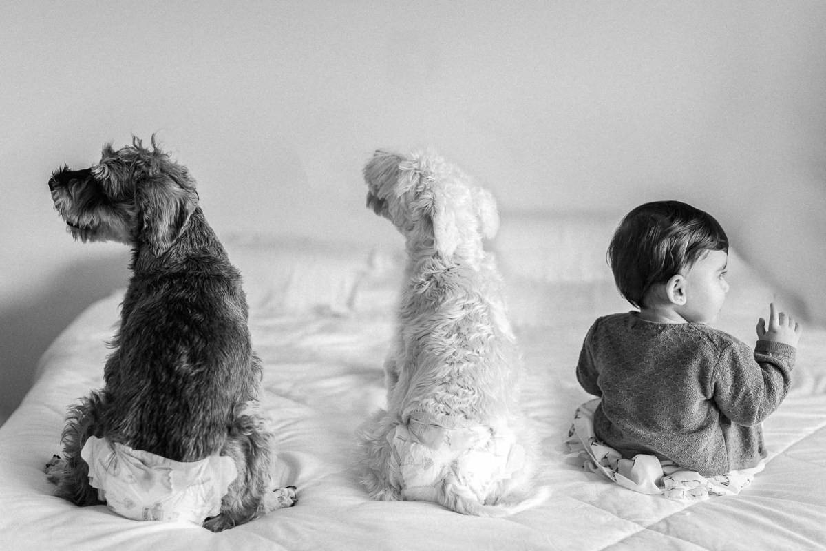 Imagem capa - Check List para ensaio Família: quais fotos não podem faltar em seu ensaio (guia com exemplos) por GUSTAVO MARTINS SOUSA