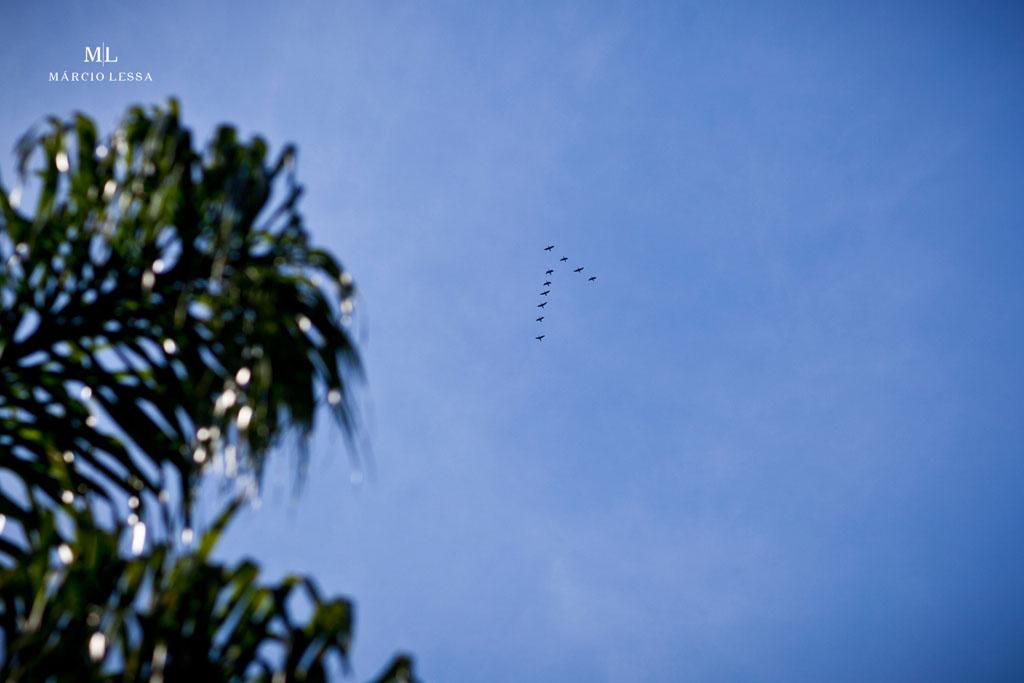 Pássaros em formação Delta no lindo céu azul | Pre-Wedding no Parque Penhasco Dois Irmãos, Leblon, Rio de Janeiro, RJ, por Márcio Lessa | Fotografia