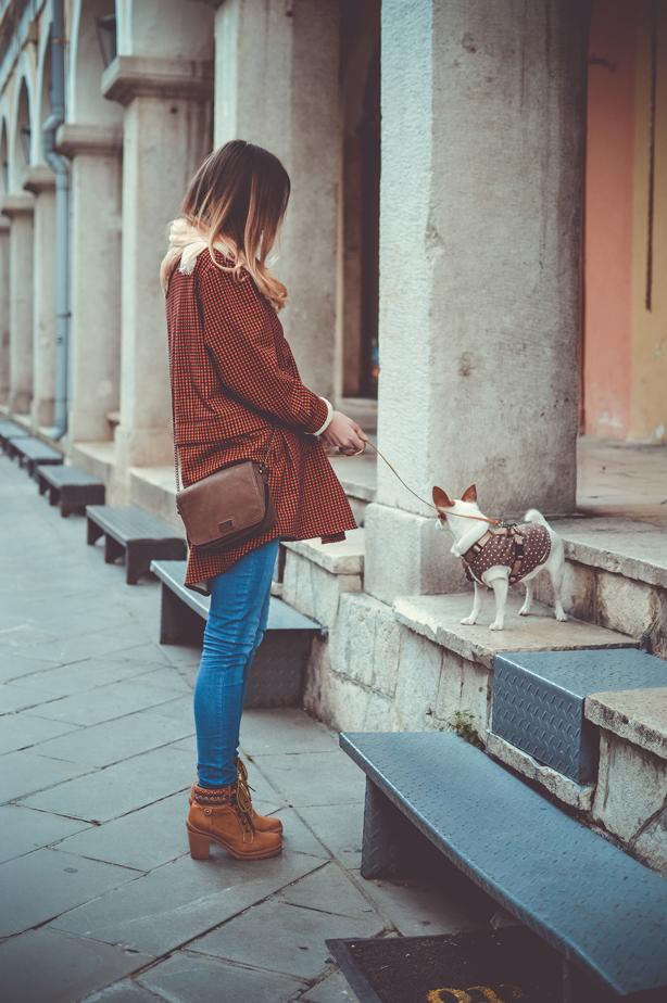 cachorro miami ensaio feminino moda fashion go go bolsa  casaco