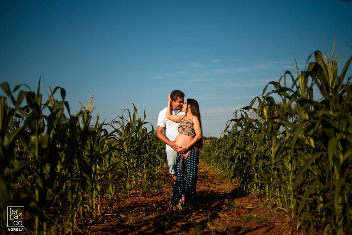 book gestante em plantação de milho