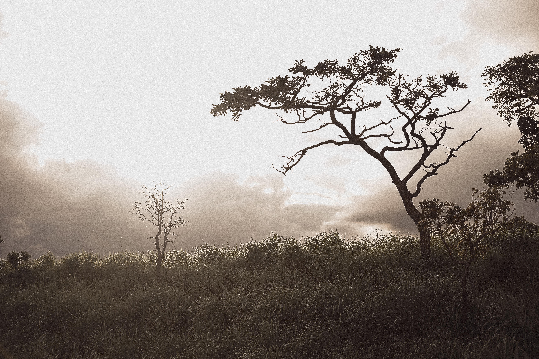 Sobre Marcos Medeiros - Fotografia Autoral/Ensaios Sensuais