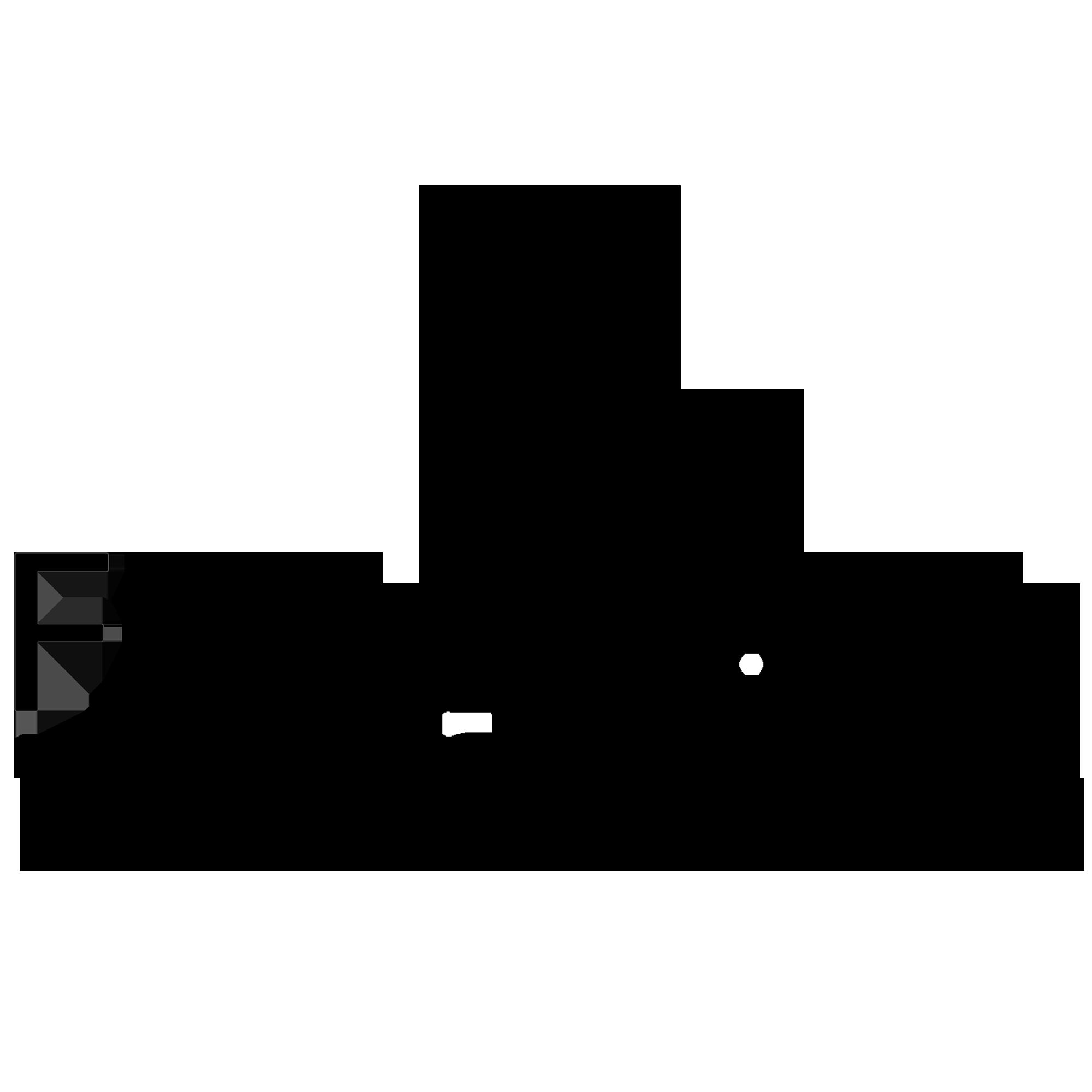 Logotipo de LUIZ CARLOS FERREIRA