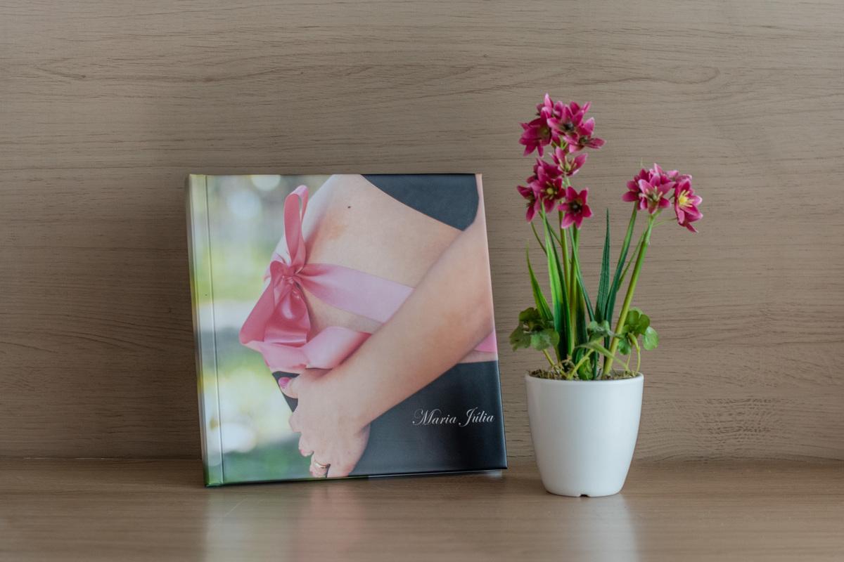 Imagem capa - Sobre os álbuns por KLISSIA GOUVEIA