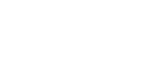 Logotipo de Idealconcept ®