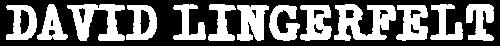 Logotipo de David Lingerfelt