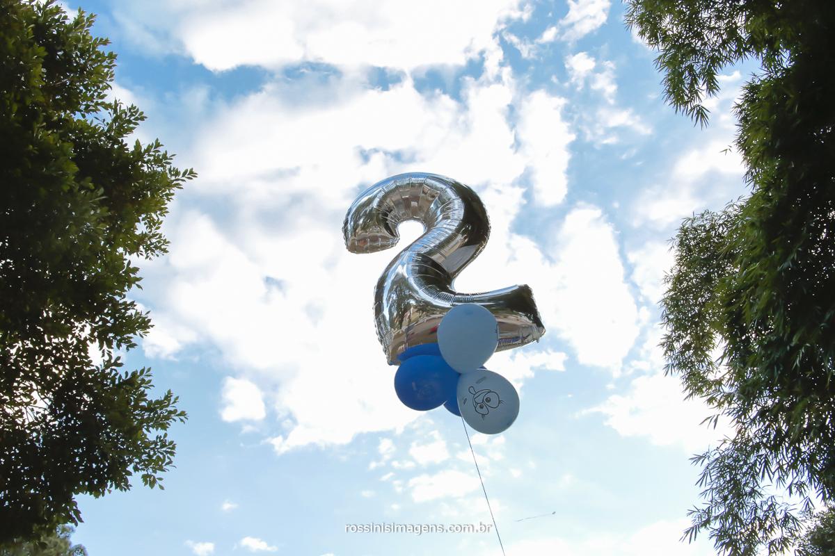 aniversário-sp-de-dia-kevin-2-anos-suzano-sp-fotografo-de-aniversario-rossinis-imagens-tema-da-galinha-pintadinha-familia-montanha-festa