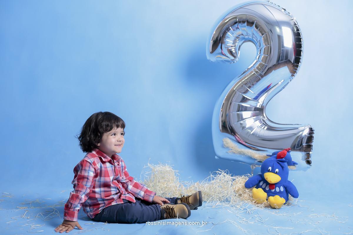 aniversário-sp-de-dia-kevin-2-anos-suzano-sp-fotografo-de-aniversario-rossinis-imagens-tema-da-galinha-pintadinha-familia-montanha-estudio-fotografico-quadro-de-assinatura