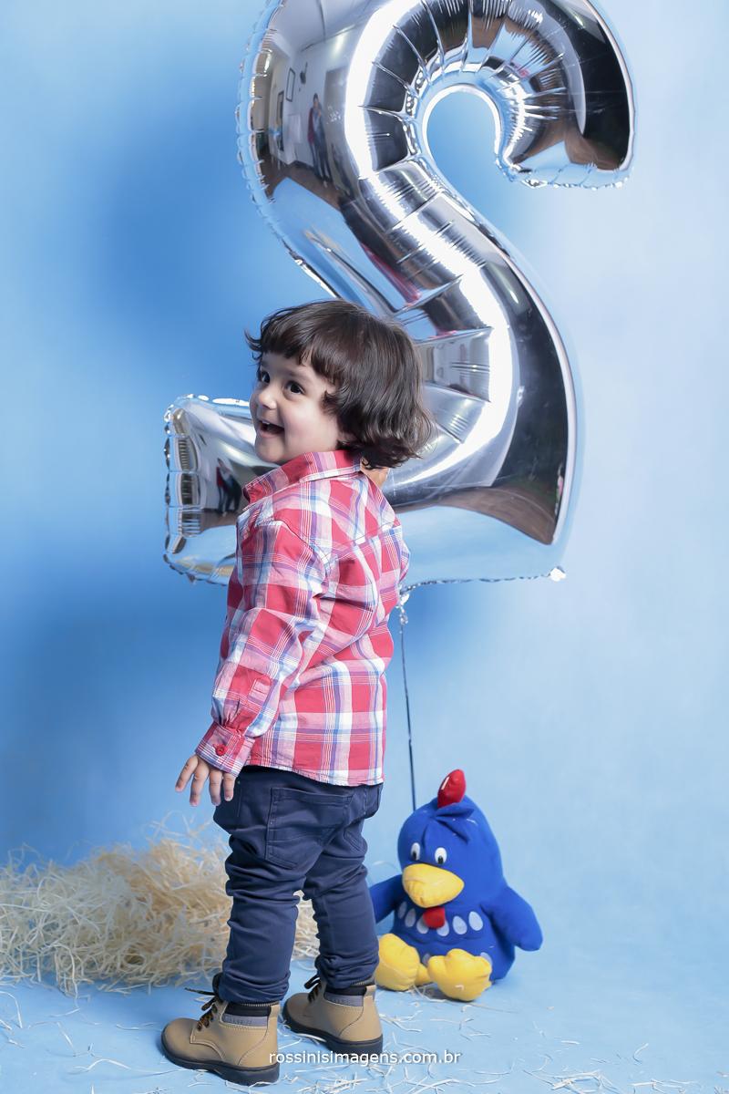 aniversário-sp-de-dia-kevin-2-anos-suzano-sp-fotografo-de-aniversario-rossinis-imagens-tema-da-galinha-pintadinha-familia-montanha-estudio-fotografico-acompanhamento
