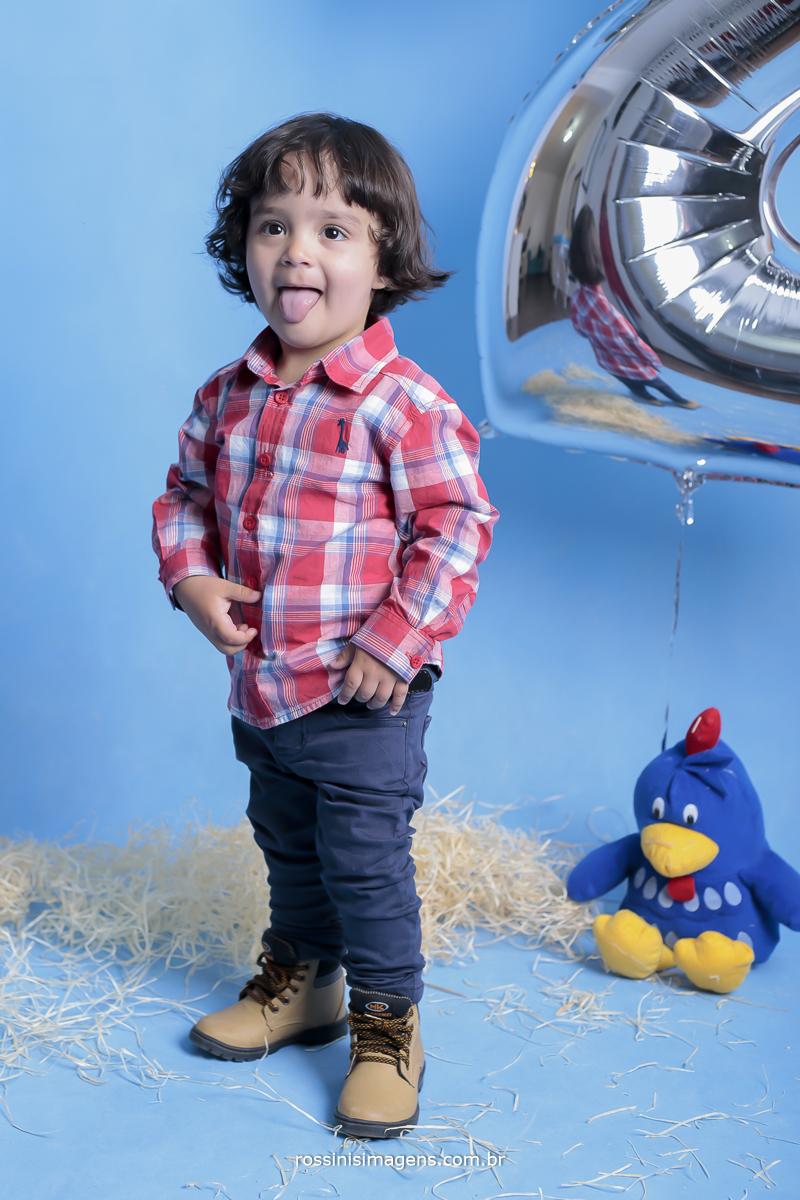 banner-aniversário-sp-de-dia-kevin-2-anos-suzano-sp-fotografo-de-aniversario-rossinis-imagens-tema-da-galinha-pintadinha-familia-montanha-estudio