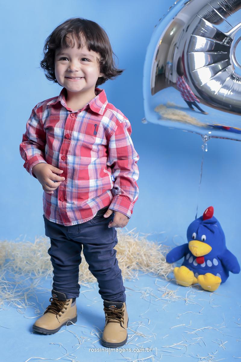 aniversário-sp-de-dia-kevin-2-anos-suzano-sp-fotografo-de-aniversario-rossinis-imagens-tema-da-galinha-pintadinha-familia-montanha-sessão-de-fotos