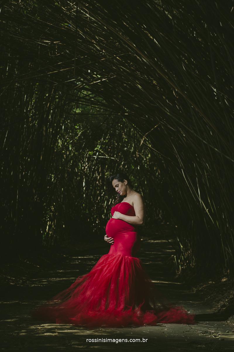 fotografia de família, ensaio gestante, jardim botânico,vestido de luxo, vestido vermelho, pregnant, corredor de bambu, gestante com glamour, rossinis imagens