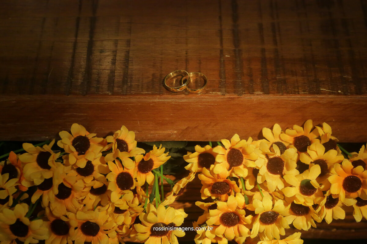 alianças fotografia de rossinis imagens, alianças e girassol, alianças e flores