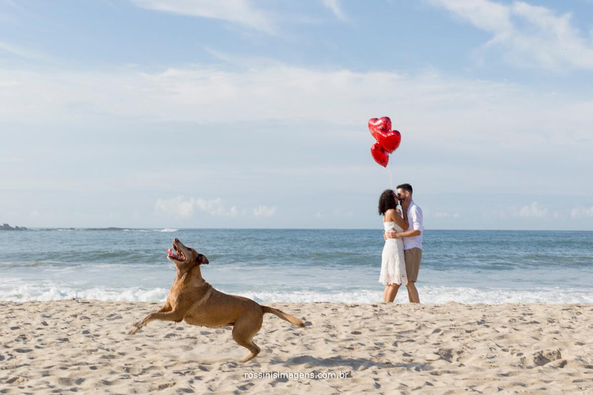 cachorro pulando e casal ao fundo com baloes de corações, @RossinisImagens