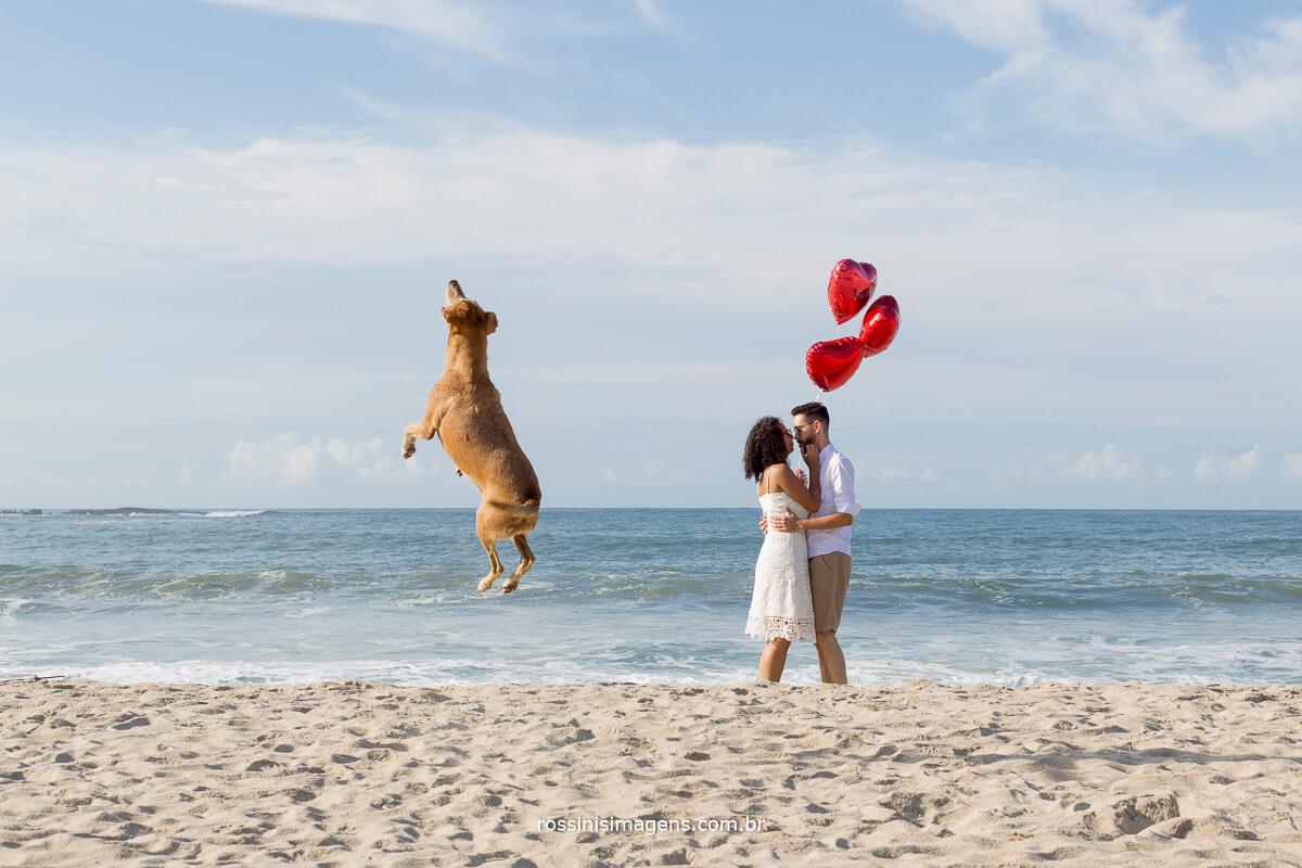 #SouAlboom #CliquedoDia #inspiração cachorro voando e casal apaixonado, @RossinisImagens