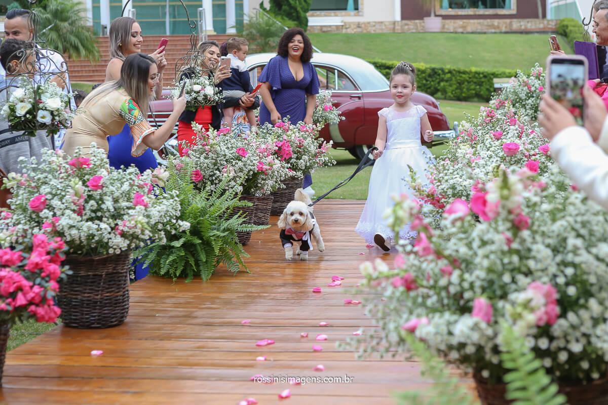 entrada das alianças com o dog da noiva, entrada das alianças com o poodle, casal pet lovers