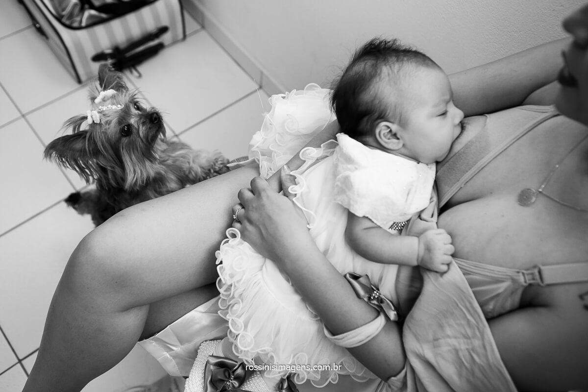 Noiva amamentando Sua Filha e a Cachorrinha Com Ciumes