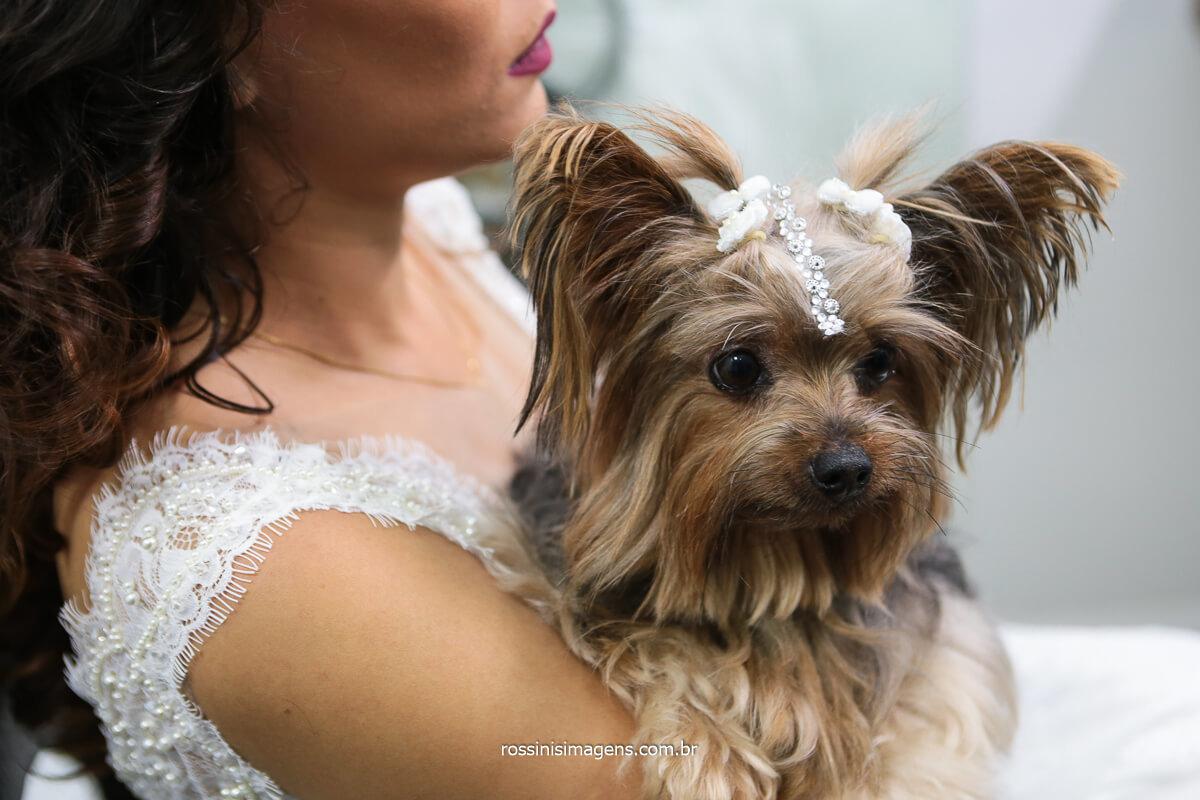 Noiva No Making Of Com a Cachorrinha No Colo, Pet No Casamento