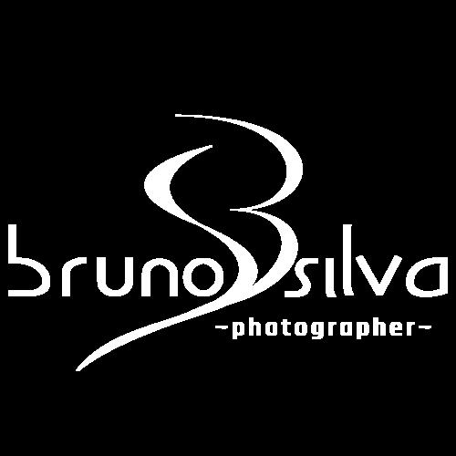 Logotipo de Bruno Silva