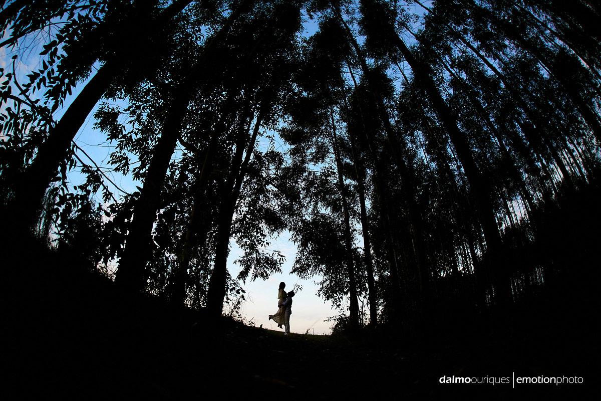 Imagem capa - Curso de Fotografia Básica em Florianópolis | Aprenda a fotografar com Dalmo Ouriques fotógrafo por Dalmo Ouriques