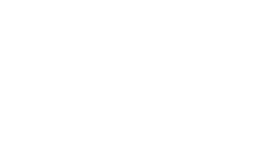 Logotipo de Ana Carolina Vaz