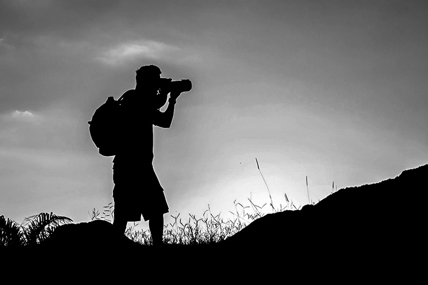 Sobre Dennis Calçada, fotógrafo de natureza | Fotógrafo de Santos SP