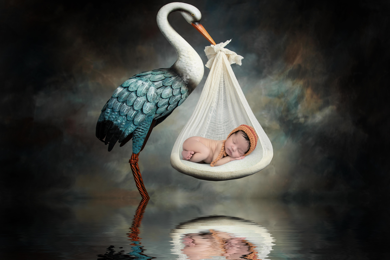 Contate Fotografia criativa de Gestantes, Partos e Newborn em Recife. Michelle Vilanova Fotografia