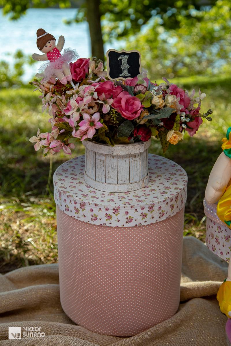 decoração de cenário para ensaio fotográfico com tema circo rosa na beira do rio em barra de são joão