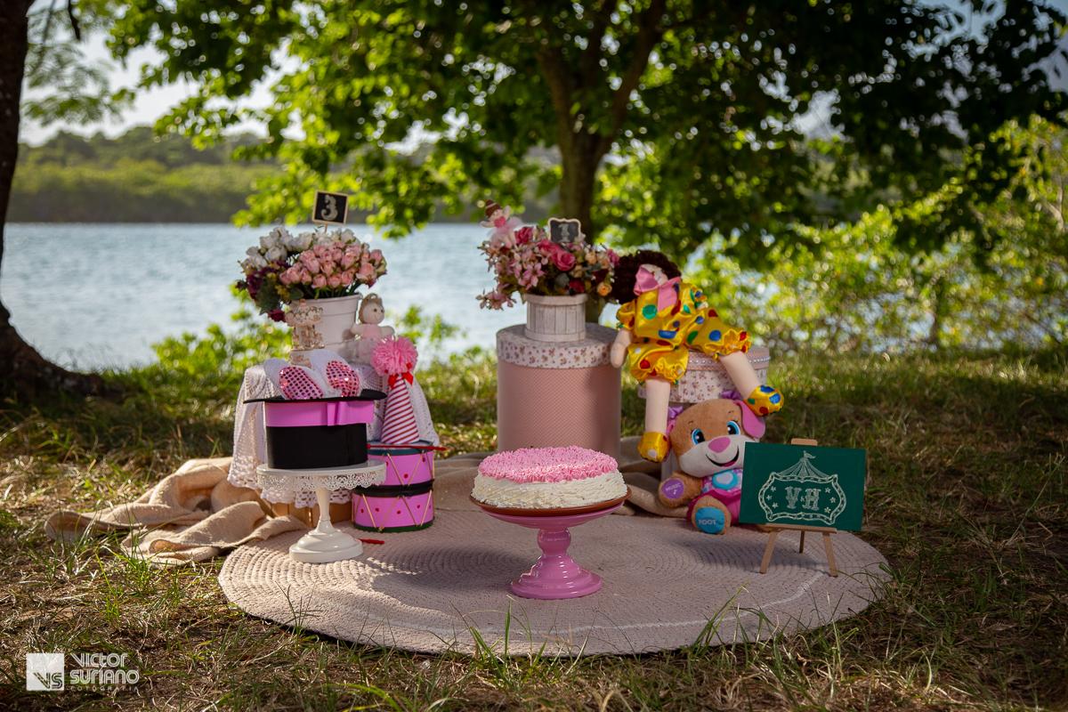 cenário smash the cake no tema circo rosa com locação na beira do rio em barra de são joão - casimiro de abreu.