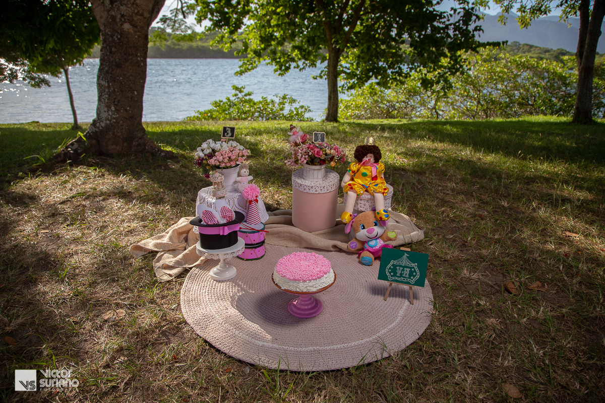 cenário para ensaio fotográfico smash the cake com tapete lilás em crochê, bolo rosa, palhaço amarelo e cartola preta com detalhes em roda na beiro do rio e com muitas árvores.