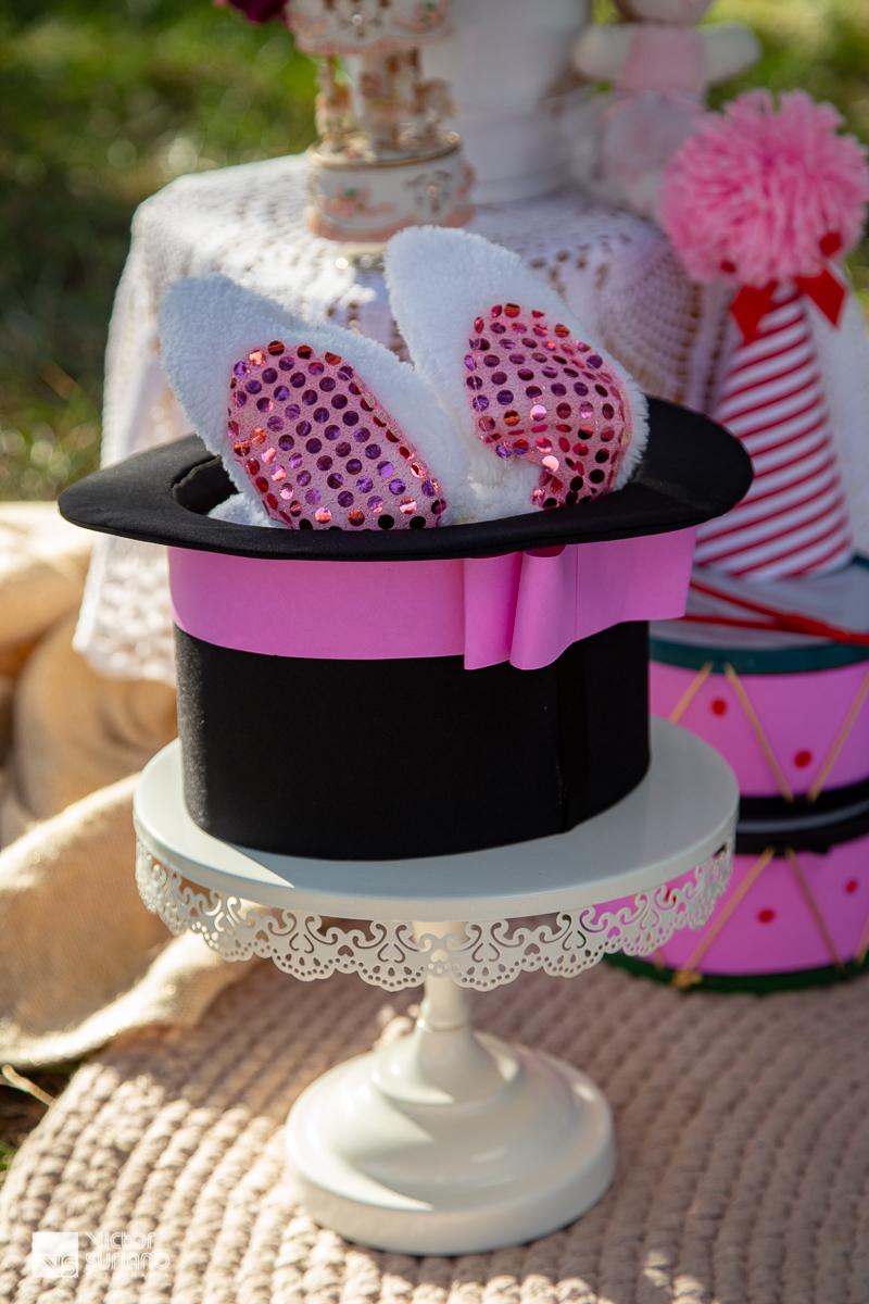 detalhes de decoração de cenário para ensaio fotográfico smash the cake no tema circo rosa