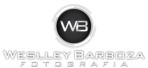 Logotipo de Weslley Barboza
