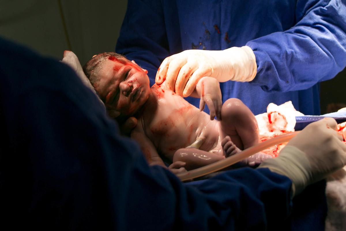 Imagem capa - Nascimentos por Carolina Cardoso