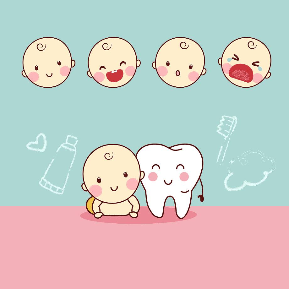 Imagem capa - O que fazer quando os dentinhos do bebê nascem? por Karina Ferreira Frias